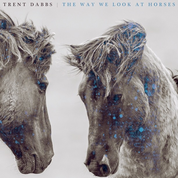 Trent Dabbs: The Way We Look at Horses